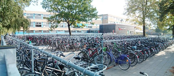 Image result for bikes outside school